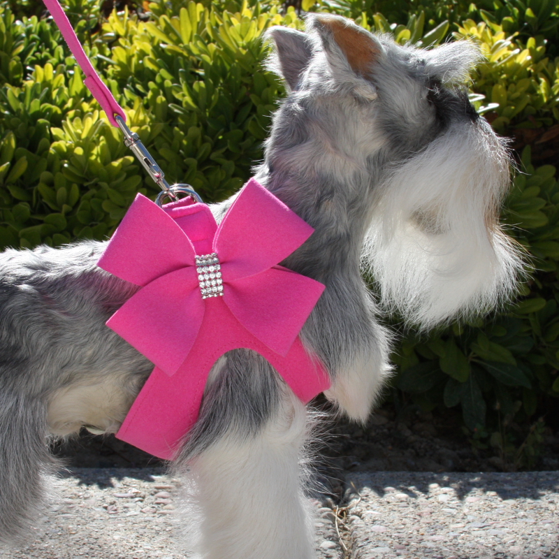 Nouveau Bow Collar Pink step in harnesses collar nouveau bow susan lanci maltese matchmaker